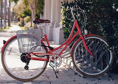 Bicycle parked near flowering bush