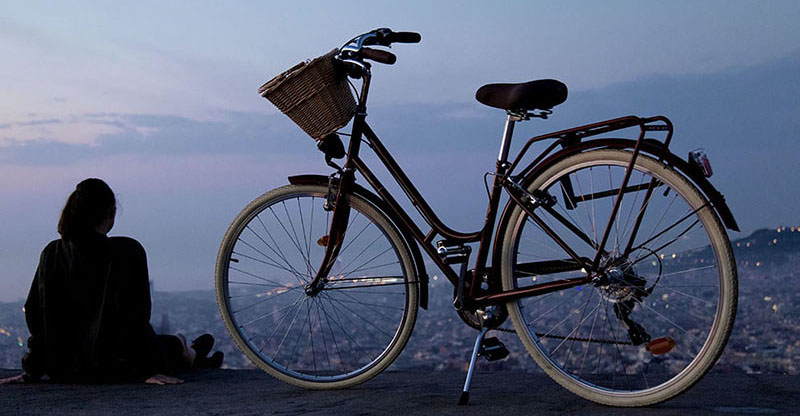 Bicycle and rider overlooking city.